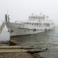 Туман :: Андрей Шаронов