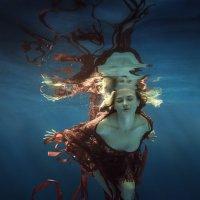 Lace and ribbon :: Дмитрий Лаудин