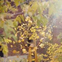 Осень. Осень.... :: Алексей Мартынов