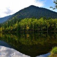 Осень... :: Геннадий Ячменев