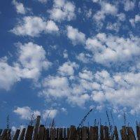 А за забором синее-синее небо :: Екатерина Торганская