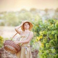Сборщица винограда :: Александр и Лариса Коноплины