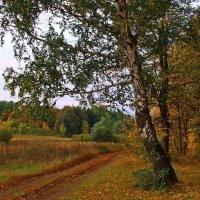 И грусть земли не выразить словами... :: Лесо-Вед (Баранов)