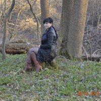 отдых в лесу :: Анастасия Ткаченко