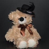 медвежонок :: Анастасия