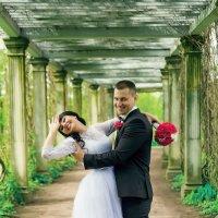 Wedding :: Ольга Кирс