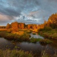На склоне дня серёдки сентября... :: Roman Lunin