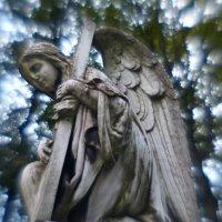 Старинное надгробие :: Зоя Азимут