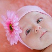 розовое счастье :: Мария Корнилова