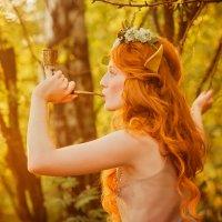 Добрая эльфийская сказка :: Светлана Fotoktoto