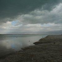 Зима на Мёртвом море :: Лев Аронс