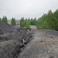 Брошенные территории :: Ирина Шарапова