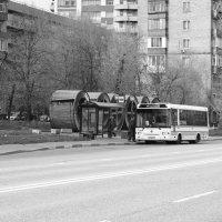 4 :: Дмитрий Паченков