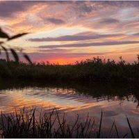 Закат на Миусе :: Райская птица Бородина