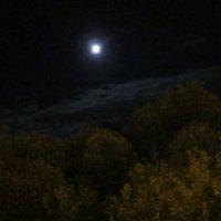 Луна :: Галина
