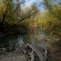 На берегу безымянной реки :: Алексей (АСкет) Степанов