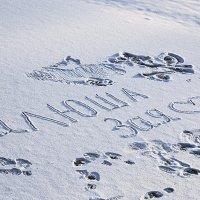 Два слова на снегу. :: юрий Амосов