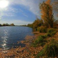 Шелестит осень жёлтою листвой :: Сергей Жуков