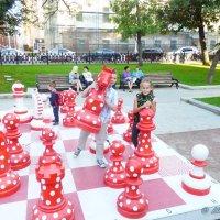 Большие шахматы для будующих взрослых. :: Alexey YakovLev