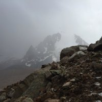 Освежающая прохлада  насыщенного тумана. :: Anna Gornostayeva