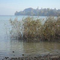 Озеро в печали по ушедшему лету :: kuta75 оля оля
