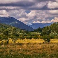 Сад, горы и облака ... :: Андрей Дворников