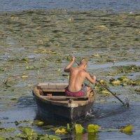 На лодке :: Татьяна Суетина