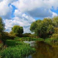 Грустнеют луговые реки... :: Лесо-Вед (Баранов)