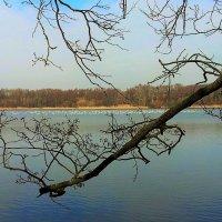 На этом озере хозяйка тишина. :: Валерий Розенталь