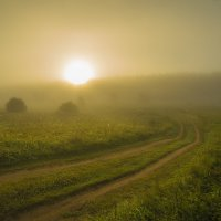 утро туманное... :: Андрей Иванов
