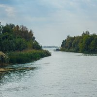 Река :: Дмитрий Максимовский
