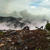Туман на горе Адзи. :: Поток