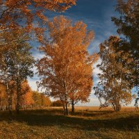 Я с осенью в ладу 2 :: Сергей Жуков