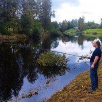 Ловись рыбка большая и маленькая :: Самохвалова Зинаида