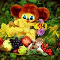 Осенние дары... :: Марина Романова