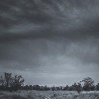 грозовое облако :: Алина Гриб