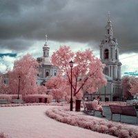 Москва. Сад им. Баумана :: Андрей Воробьев