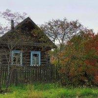 Деревенские мотивы.Осень :: Павлова Татьяна Павлова