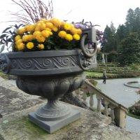 осень в камне :: kuta75 оля оля
