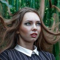 в зеленом плену :: Елена Логачева