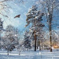 Зимний парк :: Юрий Губков