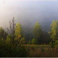 Утро.Туман и солнце. :: Владимир Михайлович Дадочкин