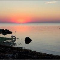 Рассвет на Азовском море в городе Геническ :: Александр