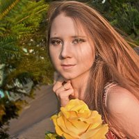 Yellow Rose :: Ольга Москович