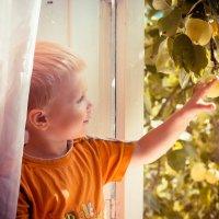яблочки :: Arina Kekshoeva