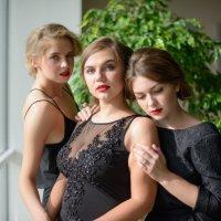 три подружки :: Александр Фищев