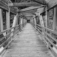 Мост :: Олег Нигматуллин