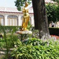 Фонтан «Колокол», декорированный золоченой бронзовой статуей Психеи :: Елена Павлова (Смолова)