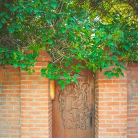 Двери в сказочную страну :: Света Кондрашова