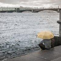 Дождь над Невой :: Алексей Кошелев